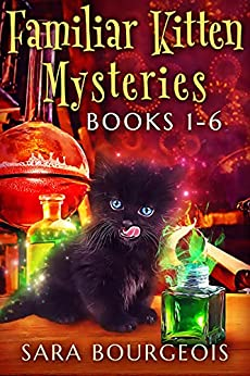 Familiar Kitten Mysteries by Sara Bourgeois